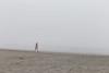 Kalaloch Fog 19