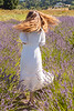 Lavender Farm 334