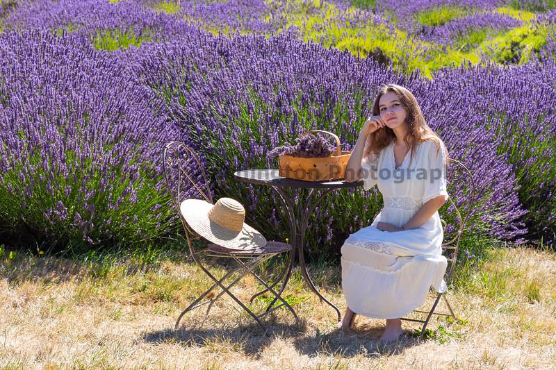 Lavender Farm 311