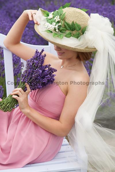Lavender Farm 174