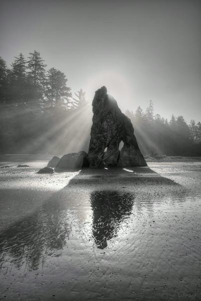 Golden Light Rock B&W