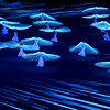 2360330 02/07/2014 Performers during the opening ceremony of the XXII Olympic Winter Games in Sochi. Alexander Vilf/RIA Novosti