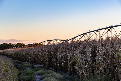 Irrigation equipment or system over a mature corn or maize field at sunset with hazy skyline.