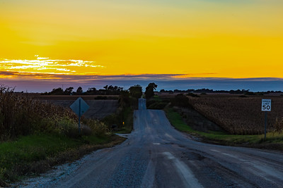 Sunset on a rural road separating corn fields. Beautiful sky colors.