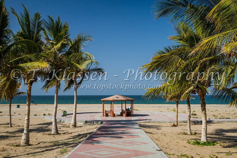 A small beach shelter in a palm tree forest on the Gulf of Oman near Muscat, Oman.