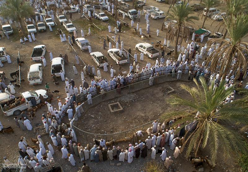 DJI_0021-3- Alrustq-Habtah- Oman