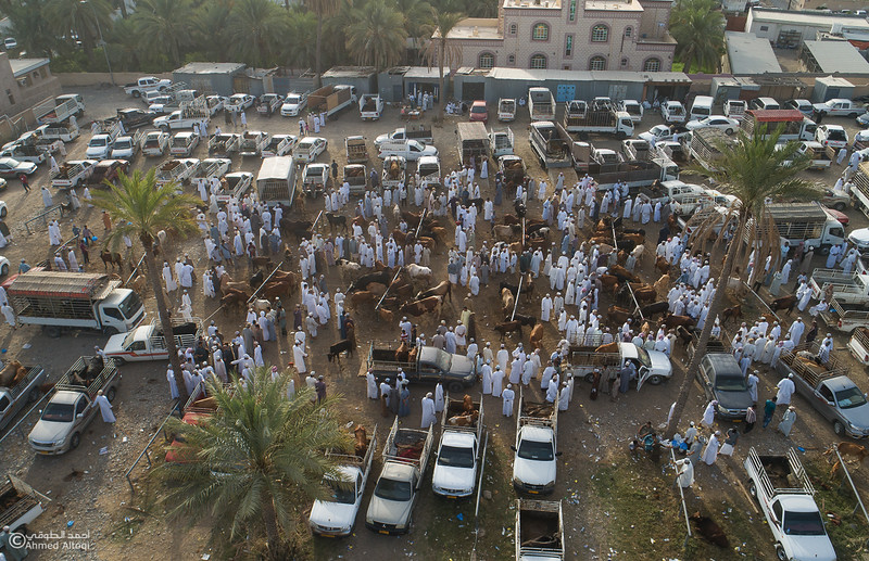 DJI_0048- Alrustq-Habtah- Oman