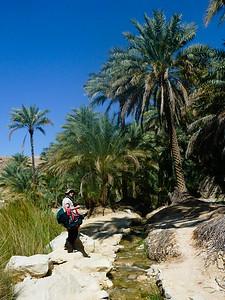 W drodze do Wadi Bani Khalid