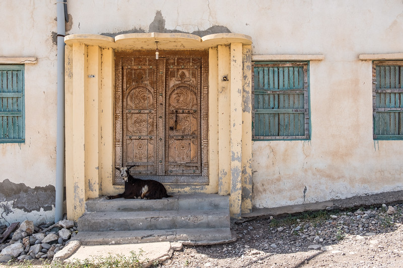 A goat sits on the top step of the entrance to a Middle Eastern house with traditional carved wooden door.
