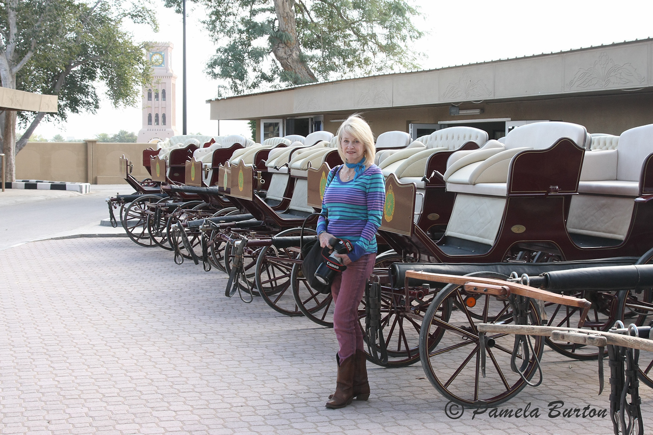 Part of carriage collection
