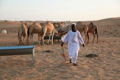 Bedouin Village. UAE.