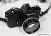 Nikon FM :: Camera - Nikon F Photomic FTn; Lens - 35mm f/1.4 Nikkor-N Auto; Film - Ilford HP5 Plus developed in Kodak XTOL.
