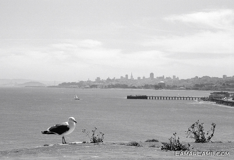 Hazy San Francisco, CA skyline from Fort Point.  Camera - Nikon FM; Lens - Nikkor 24mm f/2.8 AIs; Film - Ilford PanF Plus 50 developed in Kodak XTOL.  Scanned with Nikon CoolScan V ED.