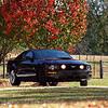 Kodak Ektar 100 - 2009 Mustang GT
