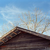 """<a href=""""http://www.buhla.de/Foto/Konica/eT2Haupt.html"""" target=""""_blank"""">Konica AutoReflex T2</a> & 52mm f/1.8 / Kodak Ektar 100"""