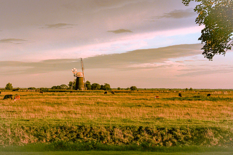 Mutton's Mill in the evening sun  (August 2011)