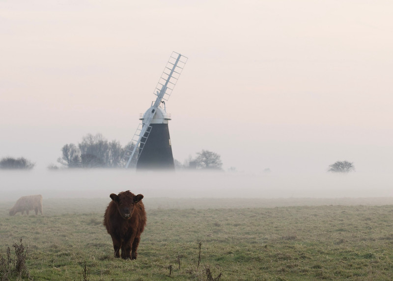 Muttons Mill in the mist (December 2016)
