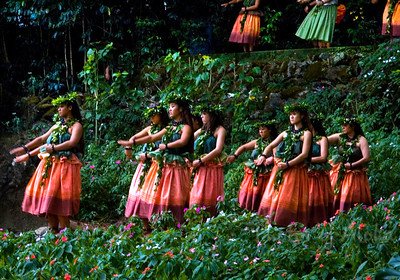 Waimea Valley is home to 36 botanical gardens and about 6,000 rare species of plants. In ancient times, the valley was a thriving area for taro farmers. Archaeological excavations uncovered many house foundations and several large heiau (sacred temples). Visitors can enjoy a 3.5-mile nature walk to the park's main attraction, the 40-foot Waimea Falls, where you can take a cool dip in the pool below the falls. North Shore of O'ahu, Hawai'i