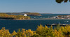 Acadia Maine Bar_Island_path