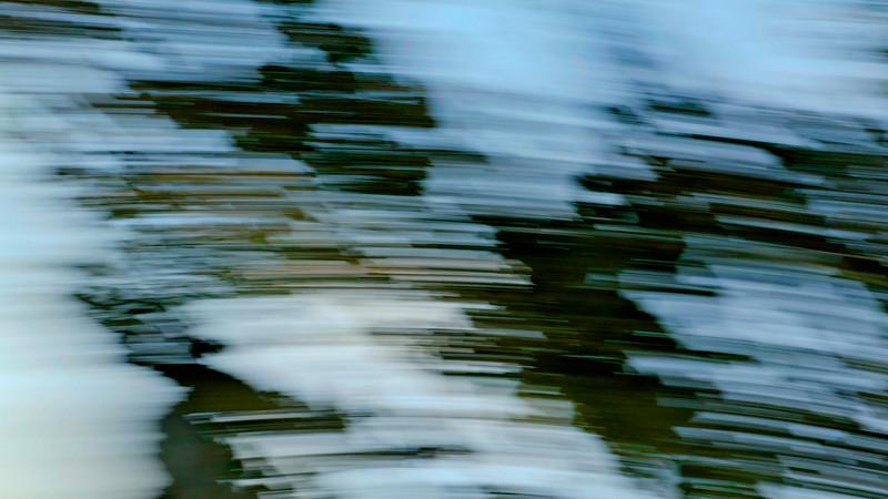 Tree Swirl 1