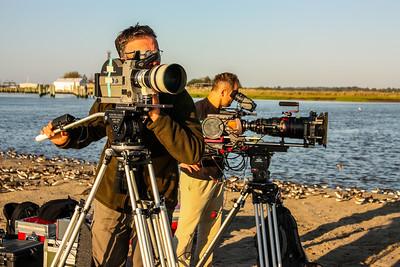 Two camera shoot of shorebirds