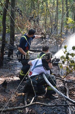20130821 - Syosset - Brush Fire