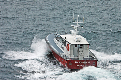 Pilot's boat