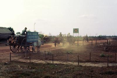 Ox carts with logs, Vietnam
