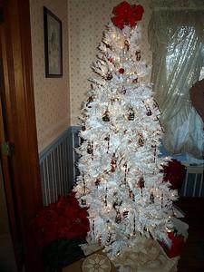 The season is festive in the Bear-Bernecker household!