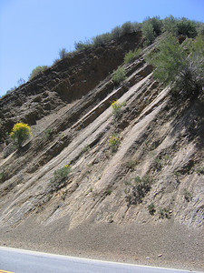 Lots of cool geology in this area. Here is some thrusted sedimantary layers. Heidi said the San Andreaus goes right by where they live.