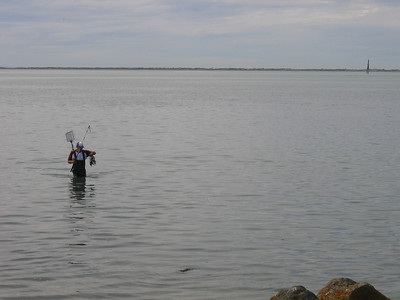 Crabbing at Dungeness State Park