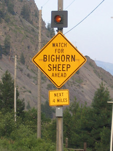 You don't see this sign very often. Par for the course in Montana.