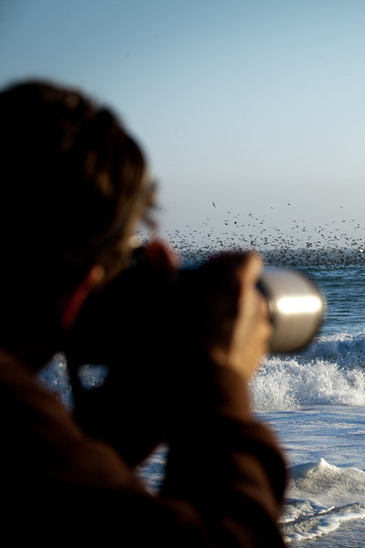 Blacks Beach, Santa Cruz, California. July 2011.