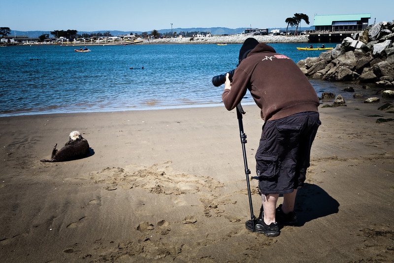 Moss Landing, California. April 2011.