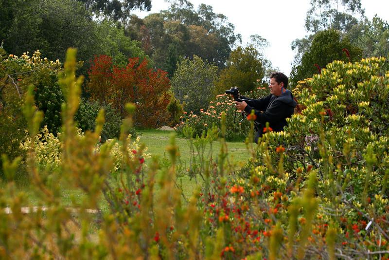 UCSC Arboretum, Santa Cruz, California. April 2009