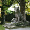 Chatsworth Canine