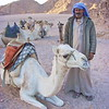 A Bedoudin's Best Friend