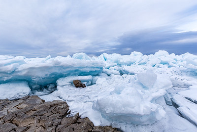 Blue Ice #3
