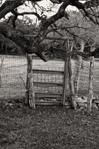 farm-bw_IMG5289