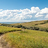 Curving Nux Baa Ga Trail in the Grasslands at Indian Hills, North Dakota