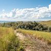 Grasslands of the Nux Baa Ga Trail, North Dakota