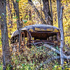 Abandoned school bus in the woods