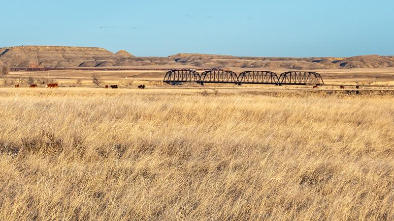 The Calypso Bridge of Terry, Montana