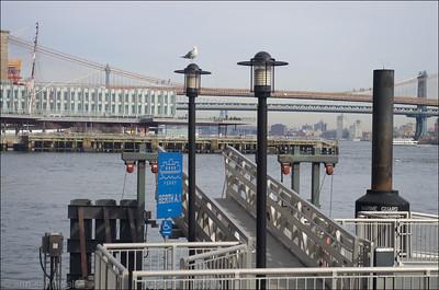 Pier 11 Berth A.1
