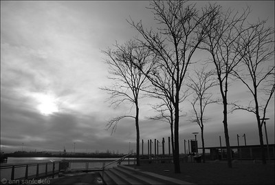"""There's a certain slant of light/On winter afternoons...""  From the esplanade at IKEA - Red Hook, Brooklyn"