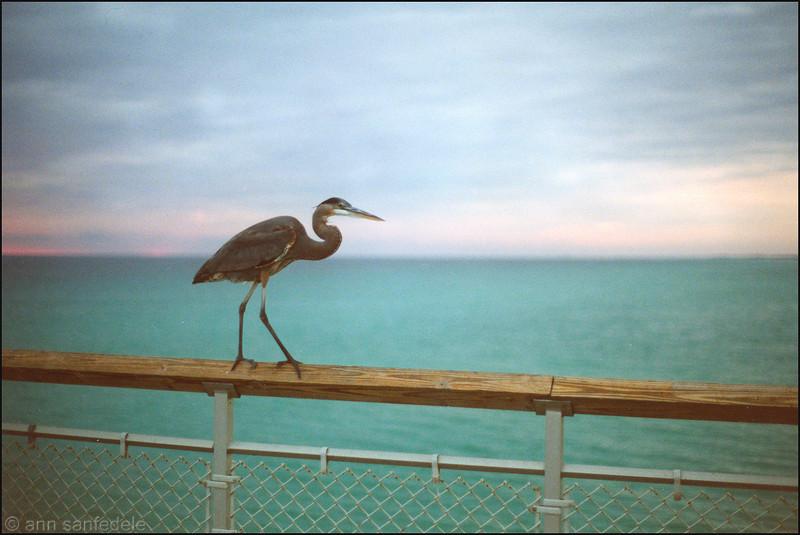 Fort Walton Beach, Florida