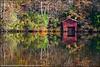 Desoto State Park, Alabama