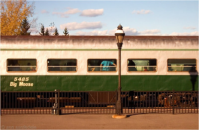 Big Moose - train car  - from the window of the train I was in