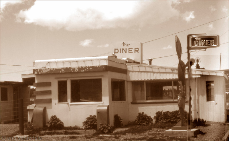 "The Diner - Tres Piedras, New Mexico - 1990.<br />  Apparently still there in 2002 (from a web mention) but not there now.  Called a motel in town to ask if it was still there. The response was ""I don't think so"". I find no notes on food for it.. I think I just liked the look of the place."