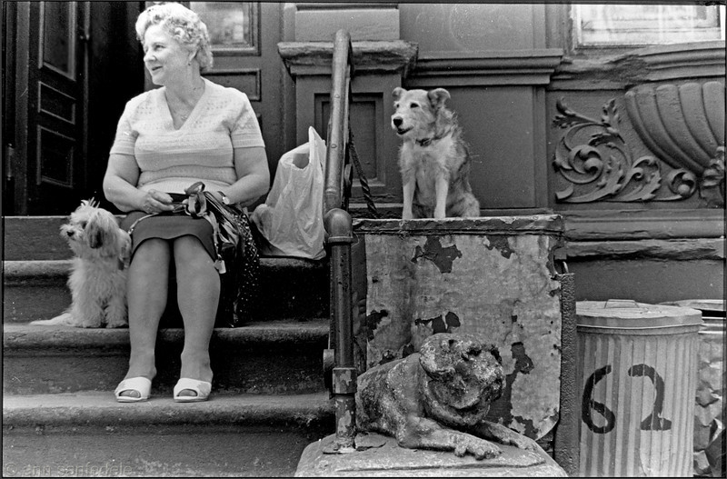 Three dog day - 62 East 7th st 1982